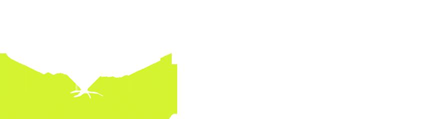 TreeShade Books